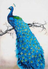 Diamond Dotz Blue Peacock Design Size 60 x 84cm
