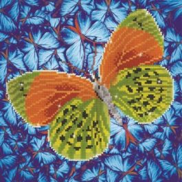 Diamond Dotz Flutter by Earth Design Size 30.5 x 30.5cm